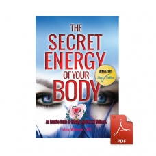 The Secret Energy of Your Body - eBook
