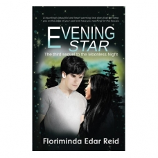 Evening Star (The third sequel to the Moonless Night, Book 3)