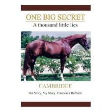 One big secret. A thousand little lies.